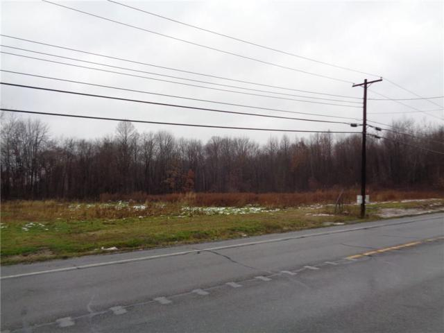 00 Route 14 North Road, Phelps, NY 14532 (MLS #R1183054) :: Robert PiazzaPalotto Sold Team