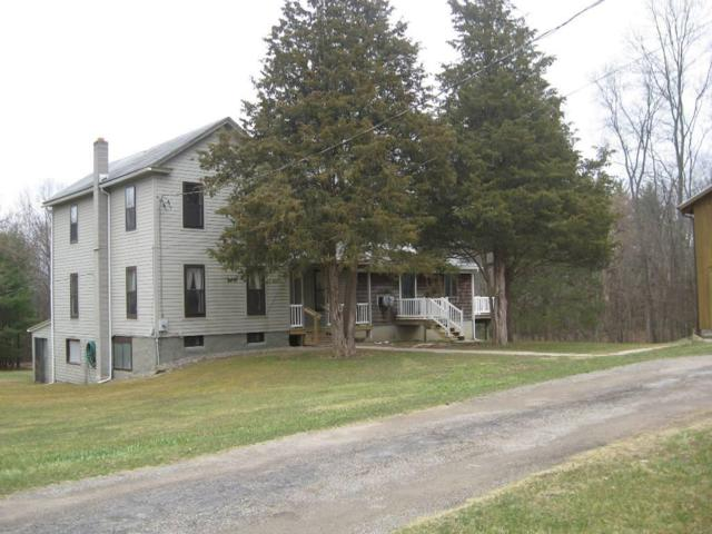 10120 Middle Road, Pulteney, NY 14840 (MLS #R1183324) :: Robert PiazzaPalotto Sold Team