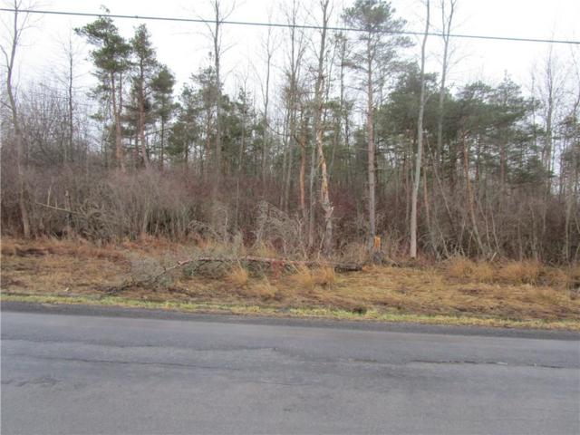 1171 Lawrence Road, Clarkson, NY 14468 (MLS #R1183537) :: Updegraff Group