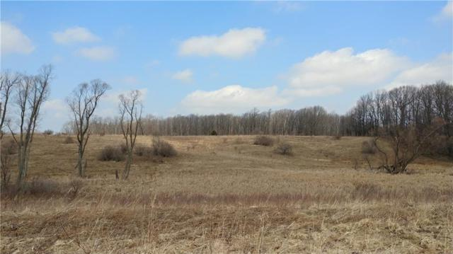 0 Co Road 39, East Bloomfield, NY 14469 (MLS #R1183599) :: Updegraff Group