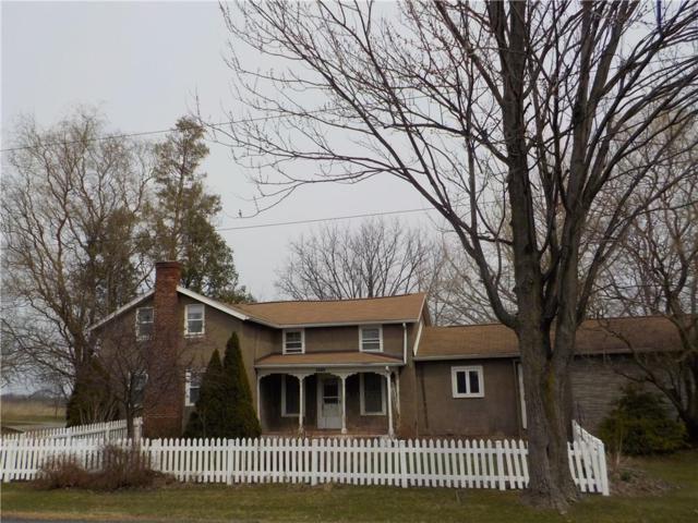 1595 Gravel Road, Seneca Falls, NY 13148 (MLS #R1184229) :: Robert PiazzaPalotto Sold Team