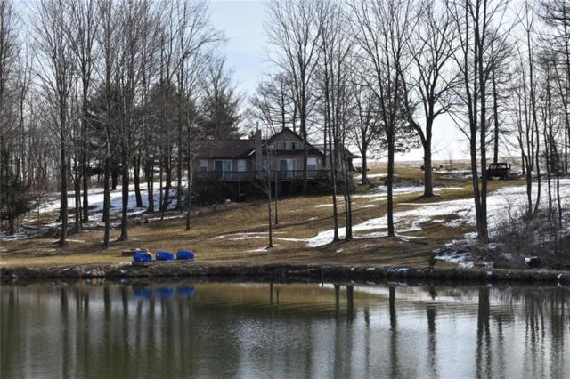 8368 Titus Road, Westfield, NY 14781 (MLS #R1184369) :: Robert PiazzaPalotto Sold Team