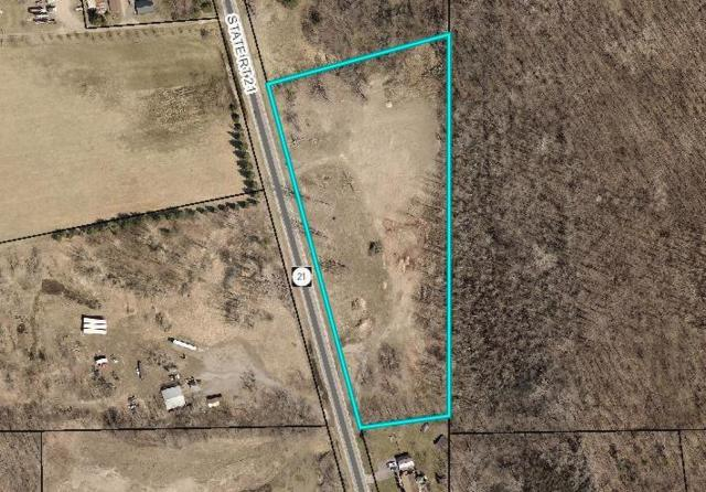0 State Route 21, Manchester, NY 14548 (MLS #R1184488) :: Robert PiazzaPalotto Sold Team