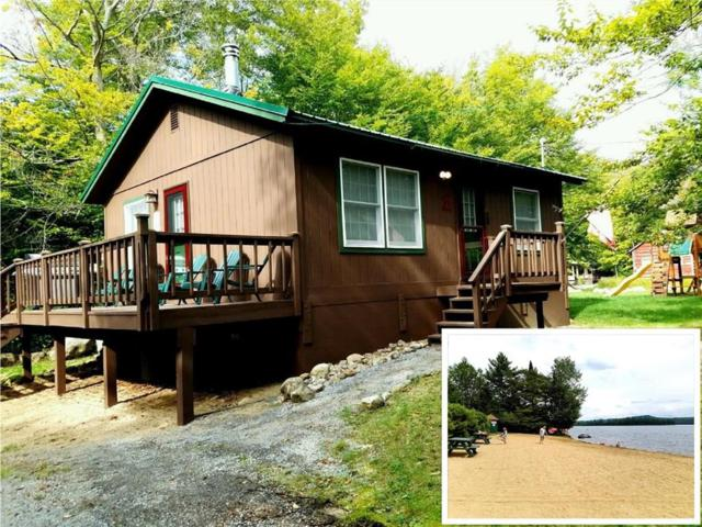 137 Dakota Road, Webb, NY 13420 (MLS #R1184511) :: The Chip Hodgkins Team