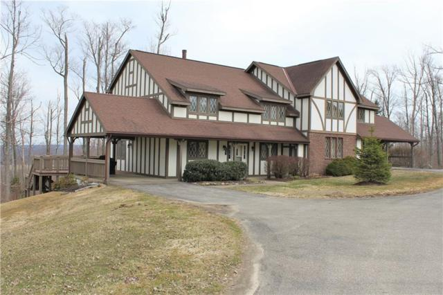 8242 Canterbury Drive, French Creek, NY 14724 (MLS #R1184592) :: Updegraff Group