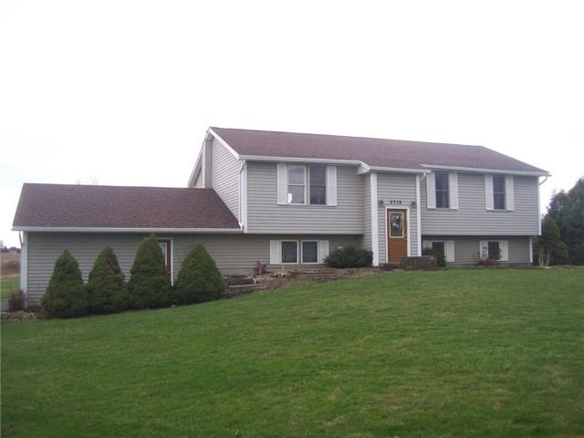 6578 Richmond Mills Road, Livonia, NY 14487 (MLS #R1185223) :: BridgeView Real Estate Services