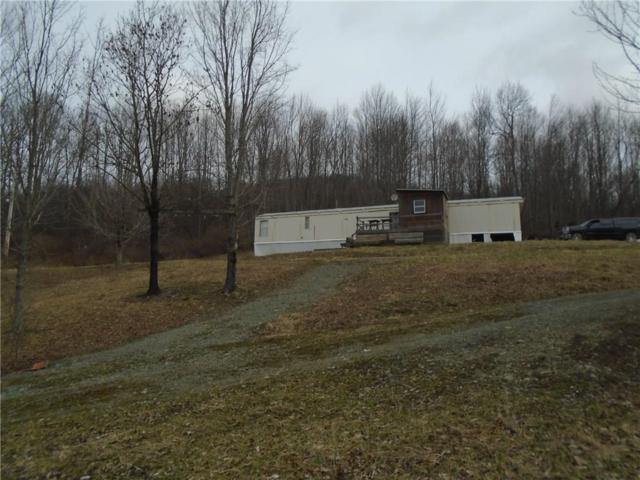 0 State Route 417 Road, Jasper, NY 14855 (MLS #R1185486) :: Thousand Islands Realty