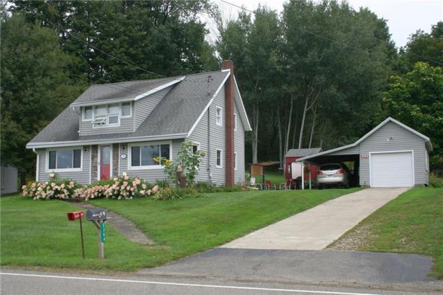 2304 Route 426, Mina, NY 14724 (MLS #R1185674) :: The Glenn Advantage Team at Howard Hanna Real Estate Services