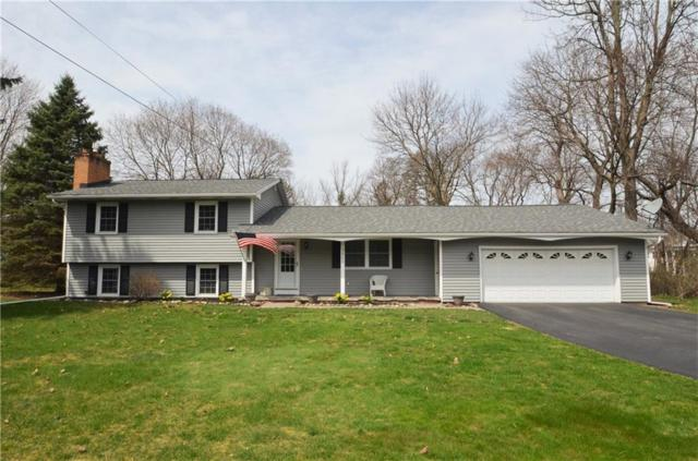 3865 Lake Road N, Clarkson, NY 14420 (MLS #R1186250) :: Robert PiazzaPalotto Sold Team