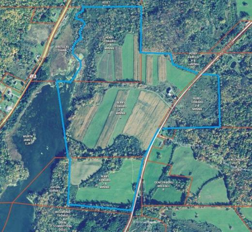 4035 Manning Road, Tyrone, NY 14887 (MLS #R1186422) :: Robert PiazzaPalotto Sold Team