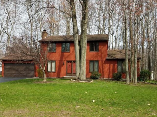 1168 Woodbridge Lane, Webster, NY 14580 (MLS #R1186565) :: Updegraff Group