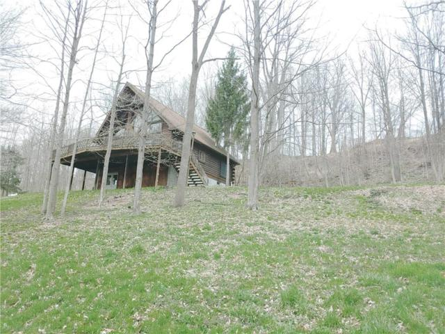 1793 Outlet & Milo Mills Rd Road, Milo, NY 14527 (MLS #R1186670) :: The Chip Hodgkins Team