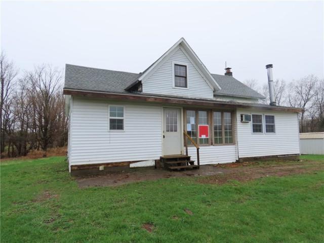 2698 Haak Road, Walworth, NY 14568 (MLS #R1187514) :: Robert PiazzaPalotto Sold Team
