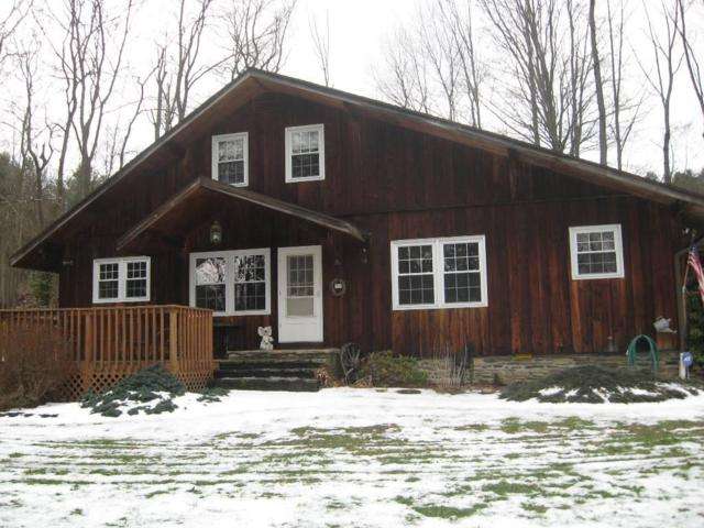 5677 Locust Grove, Bath, NY 14810 (MLS #R1187670) :: Robert PiazzaPalotto Sold Team