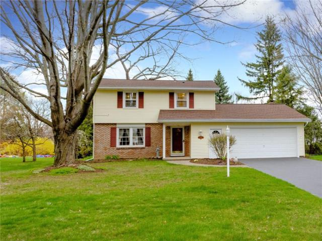 766 Newberry Lane, Webster, NY 14580 (MLS #R1187846) :: Robert PiazzaPalotto Sold Team