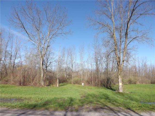 0 Bridge Road, Kendall, NY 14477 (MLS #R1190959) :: The Glenn Advantage Team at Howard Hanna Real Estate Services