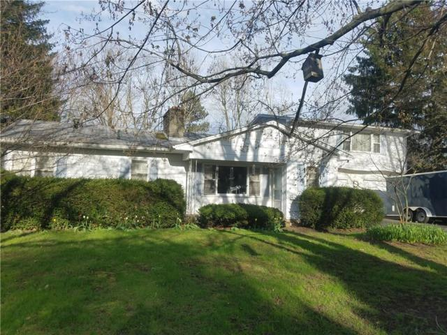 28 Lynnwood Drive, Clarkson, NY 14420 (MLS #R1190997) :: Robert PiazzaPalotto Sold Team