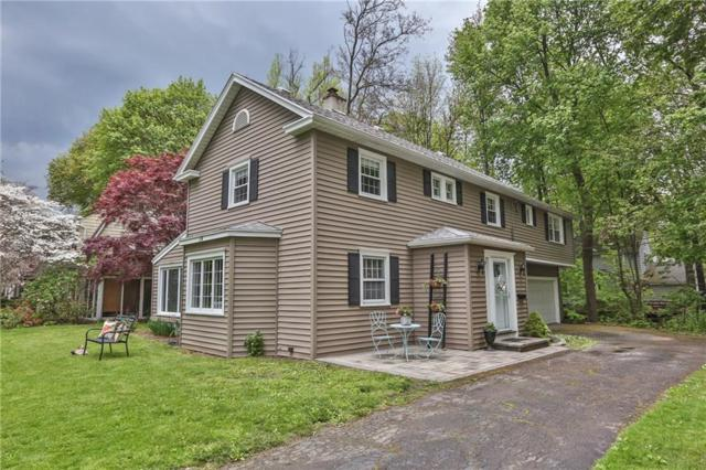 74 Buffard Drive, Brighton, NY 14610 (MLS #R1191176) :: The Rich McCarron Team