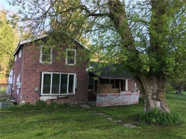 10216 Stones Falls Road, North Dansville, NY 14437 (MLS #R1191455) :: The Glenn Advantage Team at Howard Hanna Real Estate Services