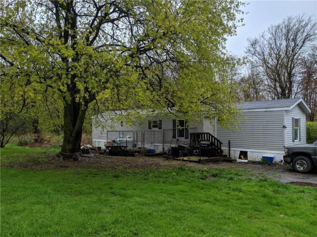 7249 Stoney Lonesome Road, Williamson, NY 14589 (MLS #R1191839) :: Robert PiazzaPalotto Sold Team