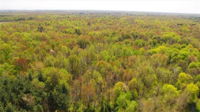 Lot 1 Seeley Road, Williamson, NY 14589 (MLS #R1193962) :: The Glenn Advantage Team at Howard Hanna Real Estate Services