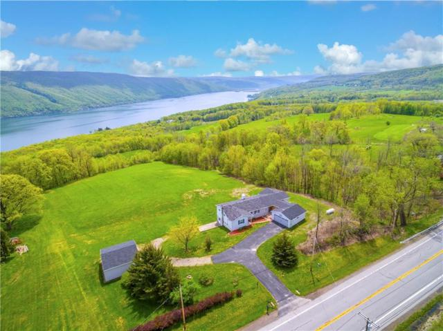 6233 State Route 21, South Bristol, NY 14512 (MLS #R1194055) :: 716 Realty Group