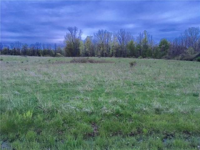0 Holley Road, Albion, NY 14411 (MLS #R1194469) :: MyTown Realty