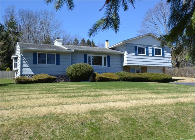 2411 Wave Way, Skaneateles, NY 13152 (MLS #R1194864) :: Updegraff Group