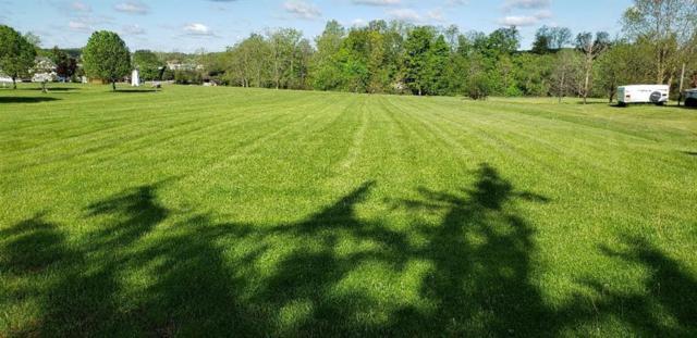 0000 Beech Tree Road, Aurelius, NY 13021 (MLS #R1195031) :: Robert PiazzaPalotto Sold Team
