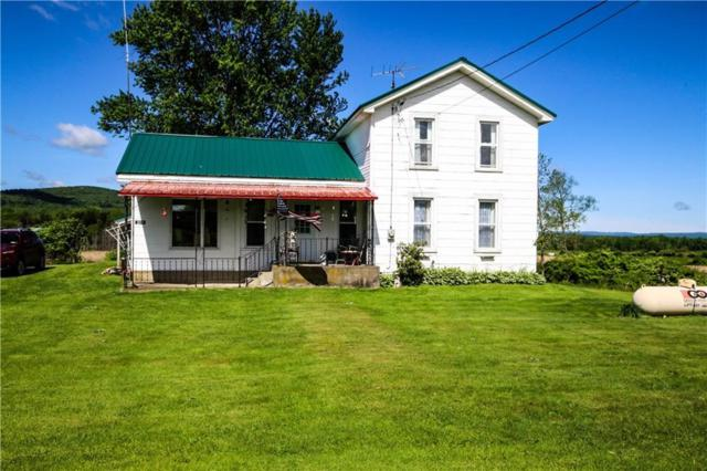 3011 Route 394, Cold Spring, NY 14772 (MLS #R1195540) :: Robert PiazzaPalotto Sold Team