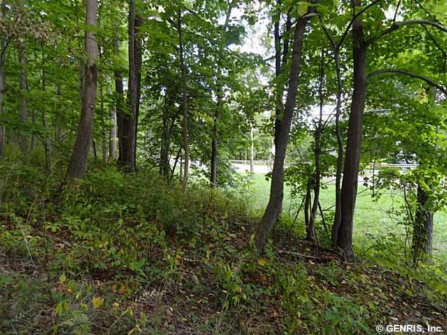 0 West Lake Road, Lot #2, Canandaigua-Town, NY 14424 (MLS #R1195817) :: 716 Realty Group