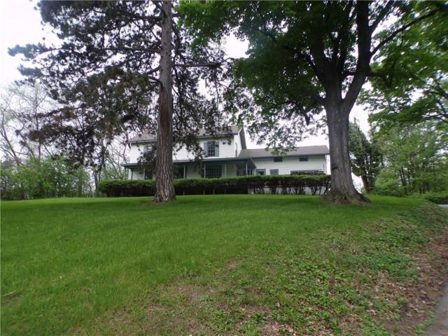 4818 State Route 14, Geneva-Town, NY 14456 (MLS #R1196289) :: Robert PiazzaPalotto Sold Team