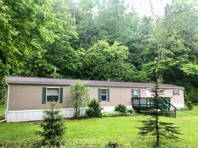 7441 County Route 69, Howard, NY 14810 (MLS #R1196974) :: 716 Realty Group