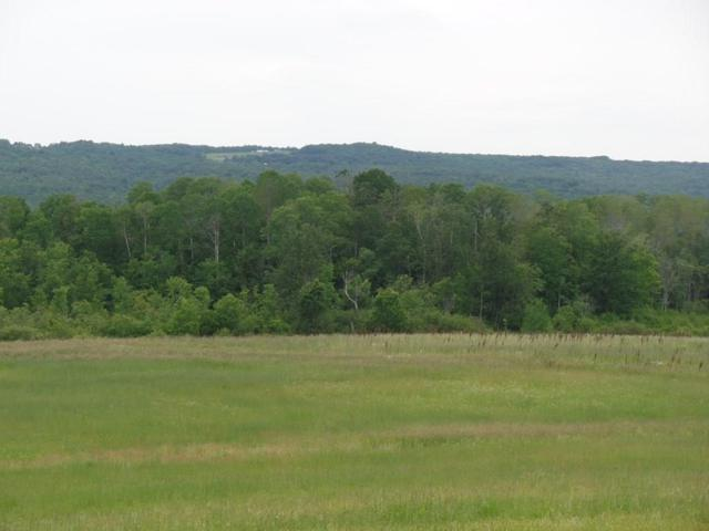A Route 226, Bradford, NY 14879 (MLS #R1197869) :: Thousand Islands Realty