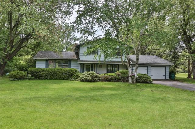 2065 Rush Mendon Road, Rush, NY 14543 (MLS #R1197953) :: The Chip Hodgkins Team