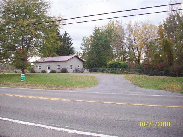 4511 State Route 414, Rose, NY 14516 (MLS #R1197986) :: Updegraff Group