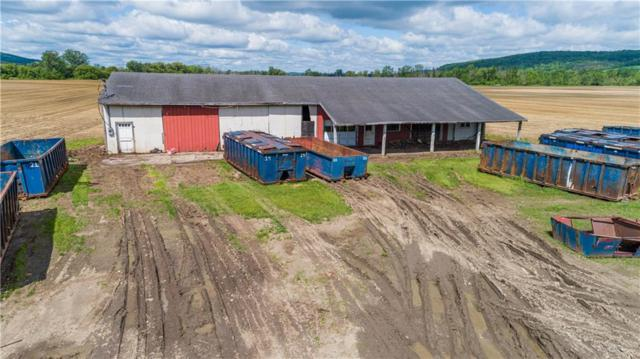 11211 State Route 21S, Wayland, NY 14572 (MLS #R1198287) :: 716 Realty Group