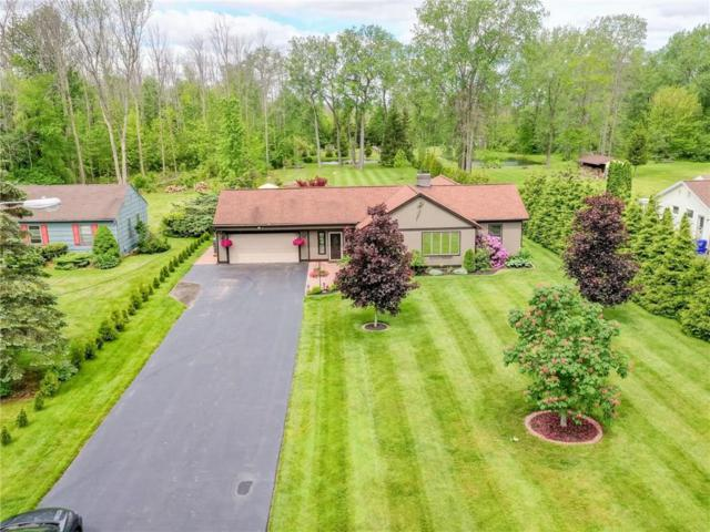 65 Dean Road, Parma, NY 14559 (MLS #R1198329) :: Updegraff Group