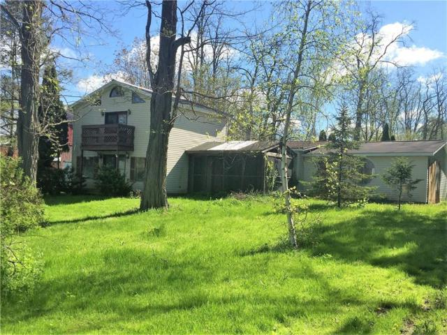 2531 Pre- Emption Rd, Phelps, NY 14456 (MLS #R1198503) :: Updegraff Group