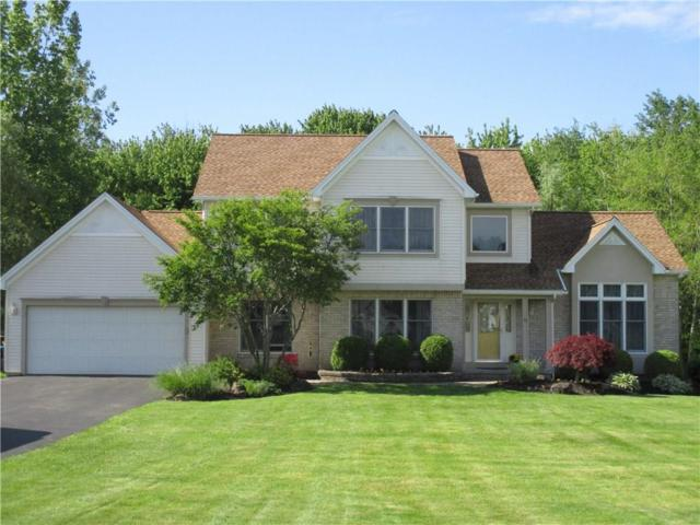 13 Connies Lane, Parma, NY 14559 (MLS #R1199178) :: Updegraff Group