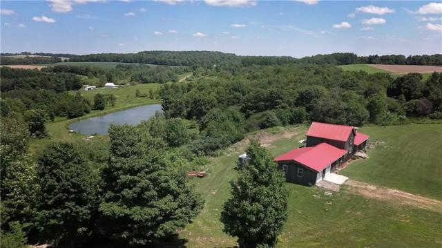 1337 Mcdonald Road, West Union, NY 14877 (MLS #R1199351) :: 716 Realty Group