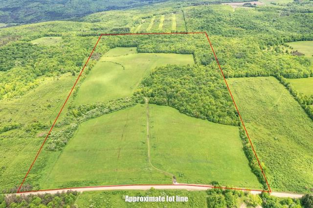 0 Pixley Hill, Andover, NY 14806 (MLS #R1199453) :: The CJ Lore Team | RE/MAX Hometown Choice