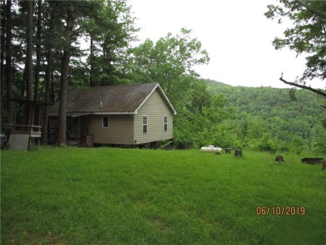 5501 County Route 14, Canisteo, NY 14823 (MLS #R1199487) :: The Glenn Advantage Team at Howard Hanna Real Estate Services