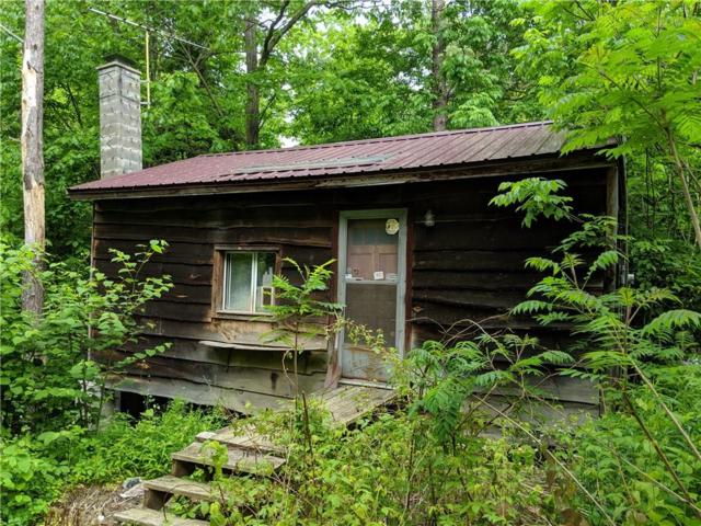 1063 Underwood Road, Hinsdale, NY 14743 (MLS #R1199509) :: Updegraff Group