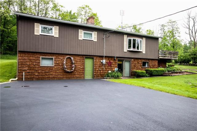 3948 Daily Hill Road, Poland, NY 14747 (MLS #R1199523) :: Robert PiazzaPalotto Sold Team