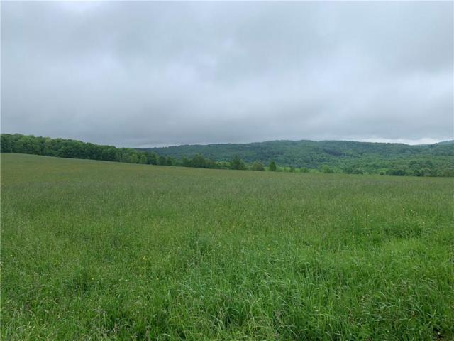 0 Gordon Road, Wellsville, NY 14895 (MLS #R1199537) :: 716 Realty Group