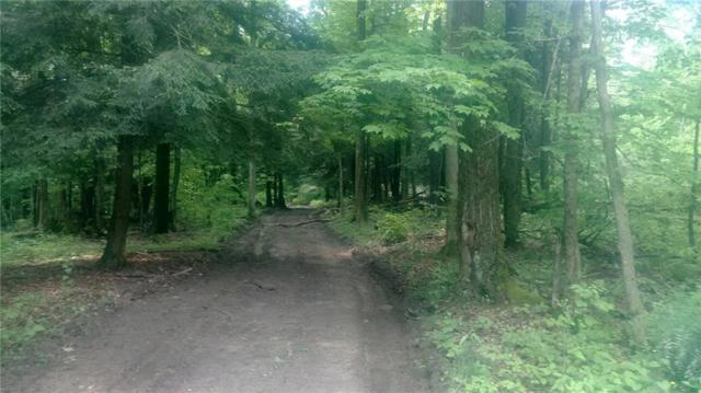 0 Newcomb Hollow Road West, Cohocton, NY 14826 (MLS #R1199635) :: Updegraff Group