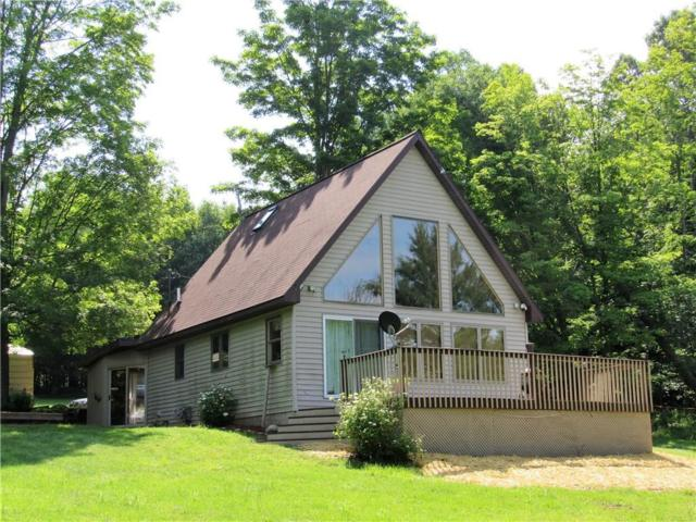 807 Prosser Hill Road, Kiantone, NY 14701 (MLS #R1200528) :: The Glenn Advantage Team at Howard Hanna Real Estate Services