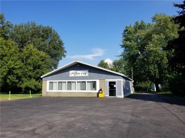 5716 State Route 14, Sodus, NY 14551 (MLS #R1201169) :: The Glenn Advantage Team at Howard Hanna Real Estate Services