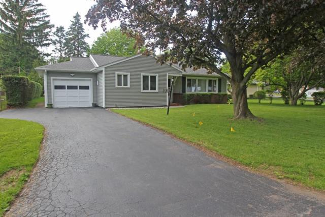 339 Lafayette Road, Irondequoit, NY 14609 (MLS #R1201528) :: Robert PiazzaPalotto Sold Team